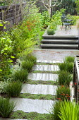 L-shaped contemporary courtyard garden, stepping stone polished concrete path with creeping thyme, ~stairs to raised terrace with chairs