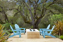 Blue Adirondack chairs around brazier on Mediterranean terrace, phormiums, Quercus lobata