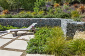 Gabion retaining wall filled with stone recycled from on site demolition, wooden recliner chair on patio, Cistanthe grandiflora 'Jazz Time', Lomandra longifolia 'Breeze', Cistus salviifolius