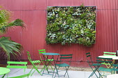 Vertical Succulent Garden, D.I.Y. Panel with sedum and sempervivum, table and chairs
