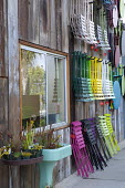 Colourful folding chairs hanging on wall, sarracenia in recycled sink container