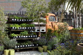 Plants for sale on racks, old truck, containers