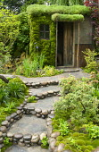 Japanese garden, shed with moss-covered wall and living green roof, steps edged with large cobbles