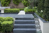 Steps to upper terrace, rill cascade water feature, clipped box hedges, tulips