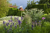 View across border to oast houses, tanacetum, Cynara cardunculus, Agastache 'Blue Fortune'