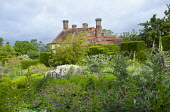 View across border to house, box hedges, artichokes, geraniums, tanacetum, foxgloves, bamboo