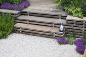 Steps made from reclaimed scaffolding boards, thyme, Alchemilla mollis, gravel