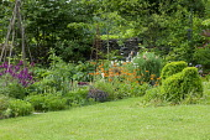 Geum 'Totally Tangerine', herb garden, box topiary