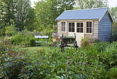 Timber shed, bench, wooden cart, peonies