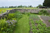 Benches in kitchen garden, potatoes, onions, grass path, ferns, dry-stone wall