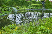Reflections in pond, frog sculpture by Luc Lapere, Iris pseudacorus 'Variegata'