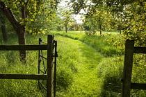 Gate, mown path through long grass meadow