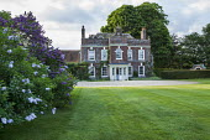 Lawn, Syringa vulgaris, house and driveway