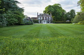 View across mown lawn with wildflower fringe to house