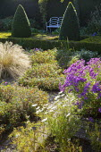 Formal garden, box pyramids, girl statue, Stipa tenuissima, view to bench, aster, cosmos