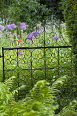 Metal gate, alliums