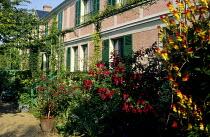 Monet's house at Giverny, fuchsia, ipomoea