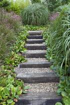 Timber-edged gravel steps, bergenia edging, miscanthus