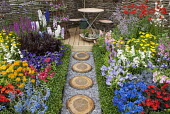 Colourful cottage garden, Lobelia cardinalis 'Queen Victoria', Penstemon 'Tubular Bells Red', Primula vialii, Delphinium grandiflorum 'Summer Nights' (Summer Series), campanula, table and chairs on de...