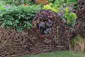 Willow woven fence