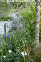 Recycled shopping trolley metal screen, Luzula nivea, Paeonia lactiflora 'Krinkled White', Betula nigra, Euonymus alatus 'Compactus', camassia