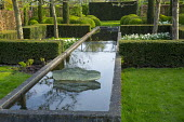 Formal raised pond through yew hedges, cloud-pruned box hedges