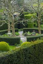 Circular yew hedge enclosing spring garden