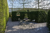 Table and chairs on patio, yew hedge screen, hornbeam hedge