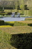 Contemporary topiary garden, wooden recliner chairs on gravel terrace, daffodils