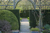 Yew hedge and timber arch, view along path to bonsai on pedestal