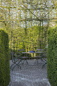 Table and chairs in hedge enclosure, circular brick paving, Taxus baccata, Carpinus betulus, bonsai in container