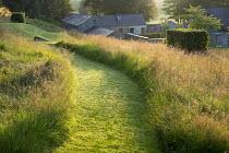 Mown path through long grass meadow