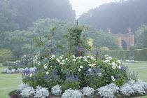 Victorian style planting at Sandringham House, Norfolk. Dahlia 'Suffolk Bride', Salvia farinacea 'Reference', Senecio cineraria 'Silver Dust', Ricinus communis