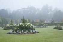 Dahlia 'Suffolk Bride', Salvia farinacea 'Reference', Senecio cineraria 'Silver Dust'