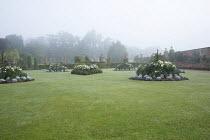 Borders with summer bedding in lawn, Dahlia 'Suffolk Bride', Salvia farinacea 'Reference', Senecio cineraria 'Silver Dust'