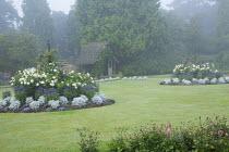 Circular borders in lawn with bedding, Dahlia 'Suffolk Bride', Salvia farinacea 'Reference', Senecio cineraria 'Silver Dust', Ricinus communis
