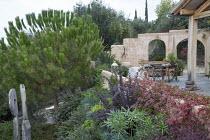 Mediterranean terrace, Pinus halepensis, Berberis thunbergii, table and chairs, Trachelospermum jasminoides climbing over wall