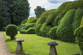Cloud-pruned box and yew hedges, staddle stones