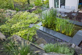 Euonymus alatus, raised pond, table and chairs on decking, pennisetum, lavender