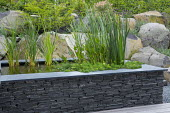 Raised pond with stone wall edging, Euonymus alatus, rock garden