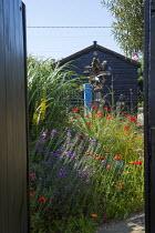 View through gate to seaside-themed garden, Papaver rhoeas, Erysimum 'Bowles's Mauve'