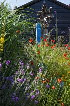 Seaside-themed garden, Papaver rhoeas, Erysimum 'Bowles's Mauve', Verbena bonariensis, black painted shed, bird sculpture
