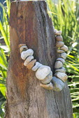String of pebbles around driftwood post