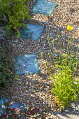 Glass bricks in gravel, Meconopsis cambrica