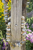 String of pebbles around driftwood post, Erigeron glaucus 'Sea Breeze'