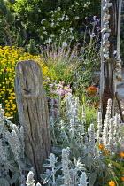 Driftwood post, Stachys byzantina, string of pebbles, Verbena bonariensis, Santolina rosmarinifolia, Erigeron glaucus 'Sea Breeze'