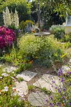 Gravel garden, bird bath, stepping stones, Yucca gloriosa, Tanacetum parthenium, Rosa 'Hertfordshire' syn 'Kortenay'
