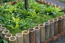 Terracotta pipe border edging around tree