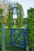 Wooden gate and arbour, hornbeam hedges