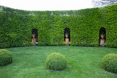 Formal garden, large box balls in lawn, lit urns on plinths in niches in hornbeam hedge